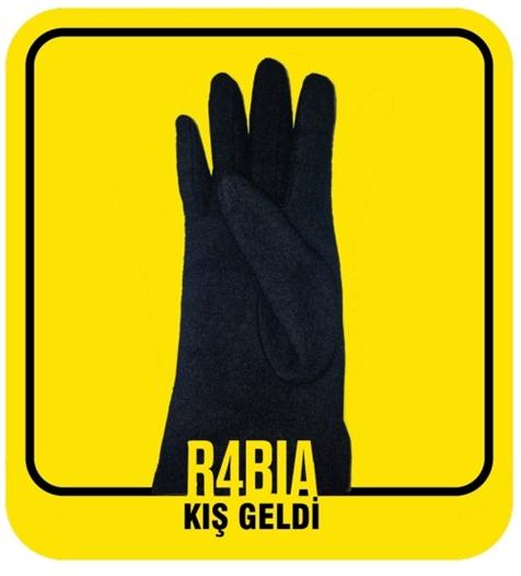 r4biaeld