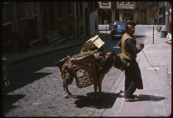 this-vendor-carried-his-goods-on-a-donkey