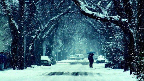 4- Elhan-ı Şita (Kış Ezgileri)