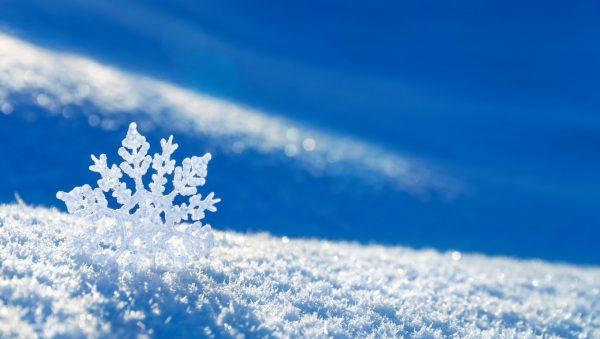 5- Kar Mûsıkileri