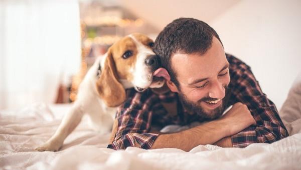 Man-with-Dog-849x480