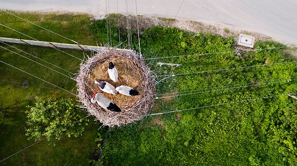 best-drone-photos-2015-dronestagram-eric-dupin-