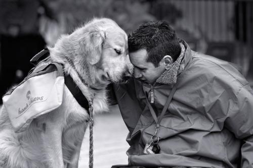 doglovesman