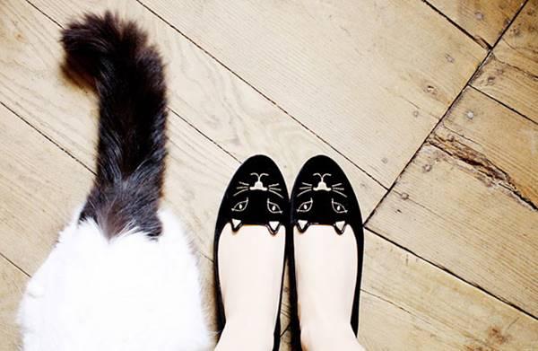 hediyekedi-ayakkab