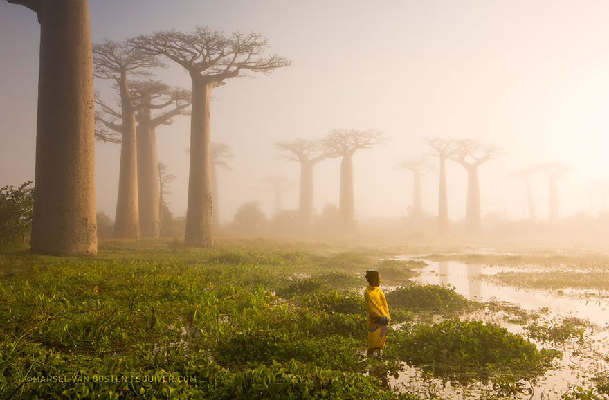 national-geographic-photo-of-the-day-interne