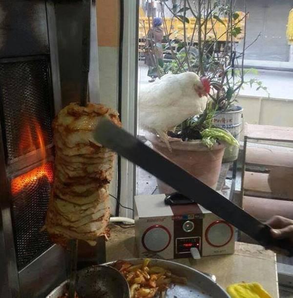 pztruhhali-tavuk
