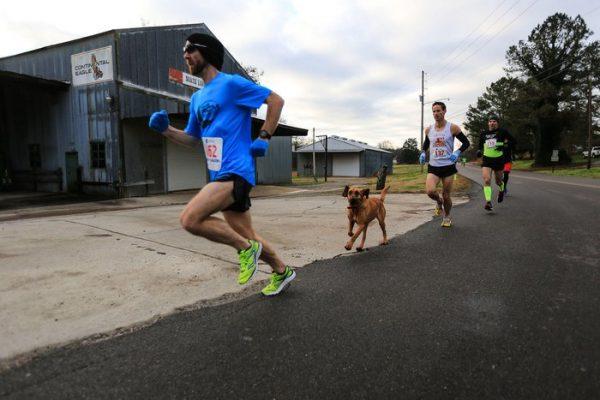 1.ludivine.maraton.list
