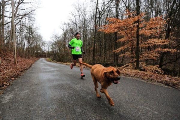 3.ludivine.maraton.list