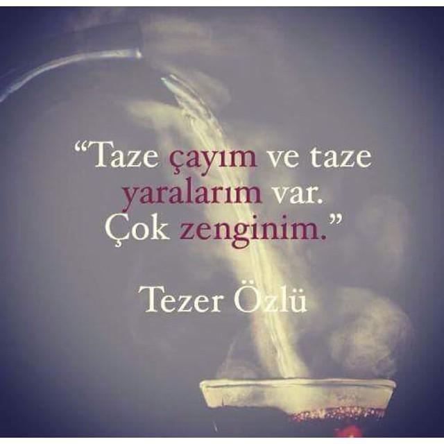 TezerOzlu-yara-yorgunluk-cay-Tamirciciragi-edebiyat-f-Sayfa-siir-Sayfa-kitap-kadin