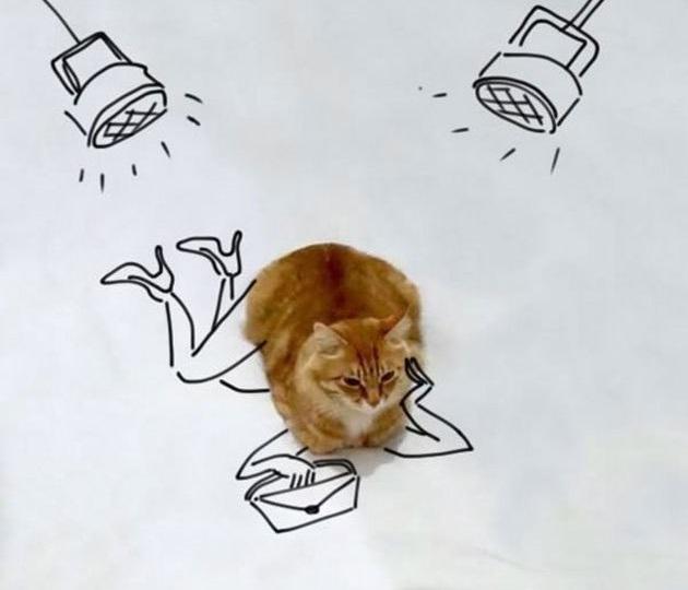 kedi cizim  10