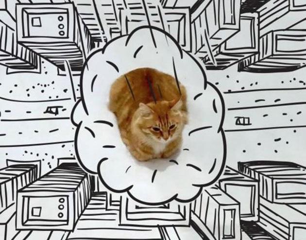 kedi cizim  11