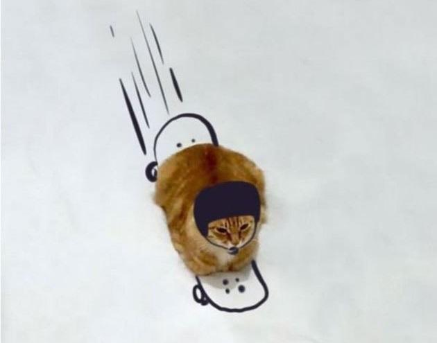 kedi cizim 2
