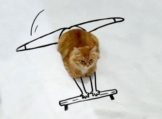 kedi cizim  3