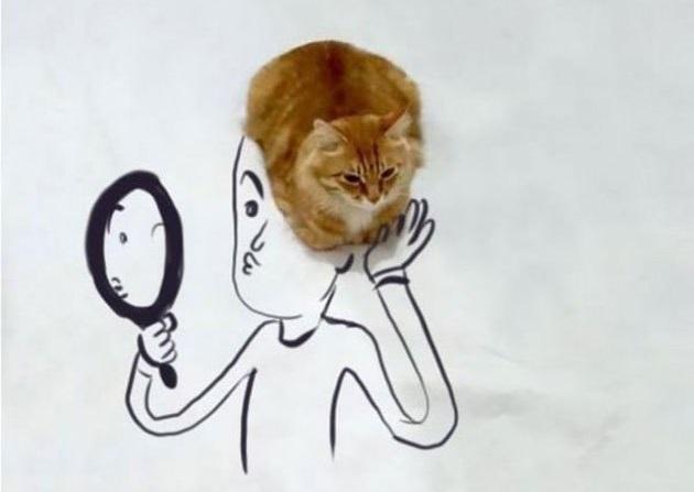 kedi cizim  7