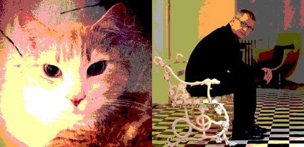 kediler-guzel-uyanir.listelist