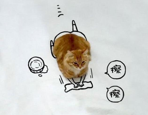 kedim cizim 5