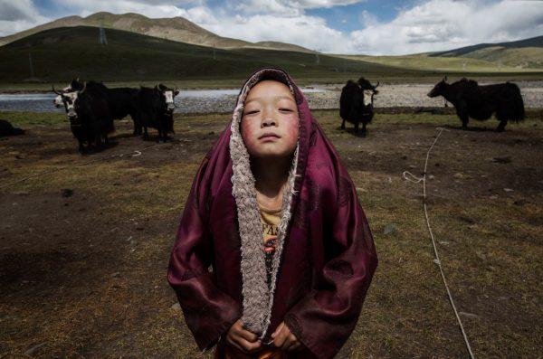 Tibetan Nomadic Culture Faces Challenges On The Tibetan Plateau