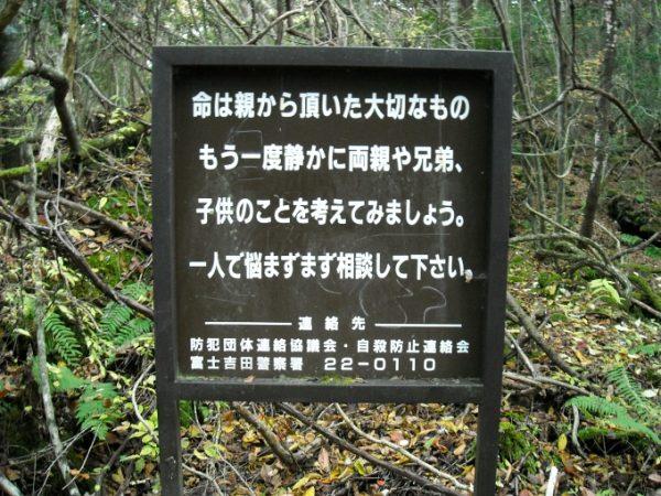 3.normal.ormanlarda.ates.takmayiniz