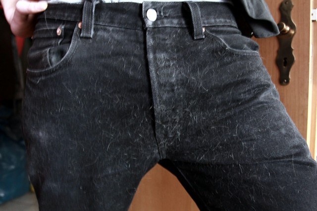 pussy-pants-02