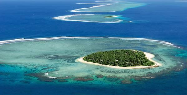 subat12.Tavarua Adasi-Fiji