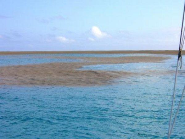 1 okyanus