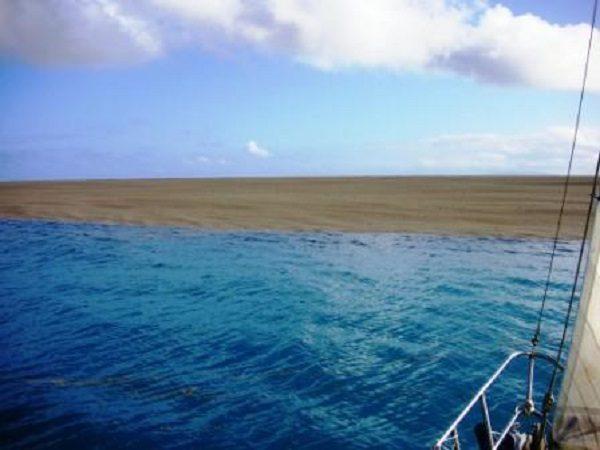 2 okyanus