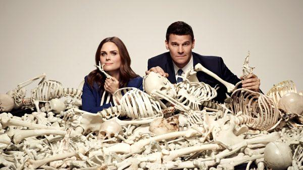 24.osteoloji