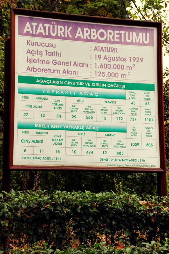 5e6dc-14-yalova-ataturk-arboretumu
