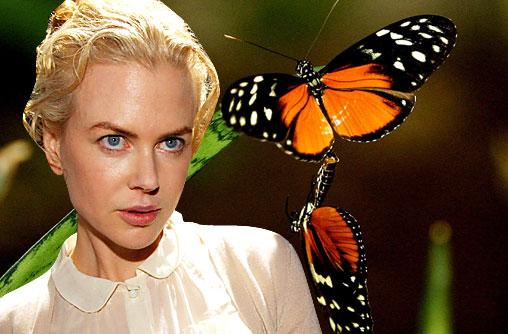 Nicole-Kidman-kelebek-korku