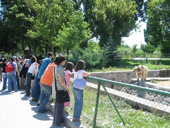 hayvanat bahçesi 4