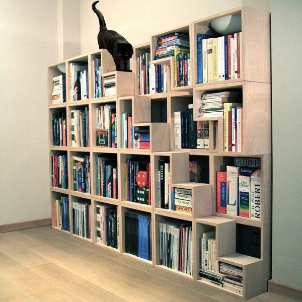 kedi-kitaplık