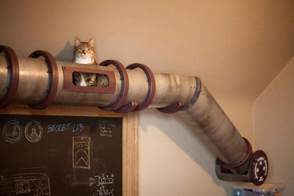 kedi-metrosu