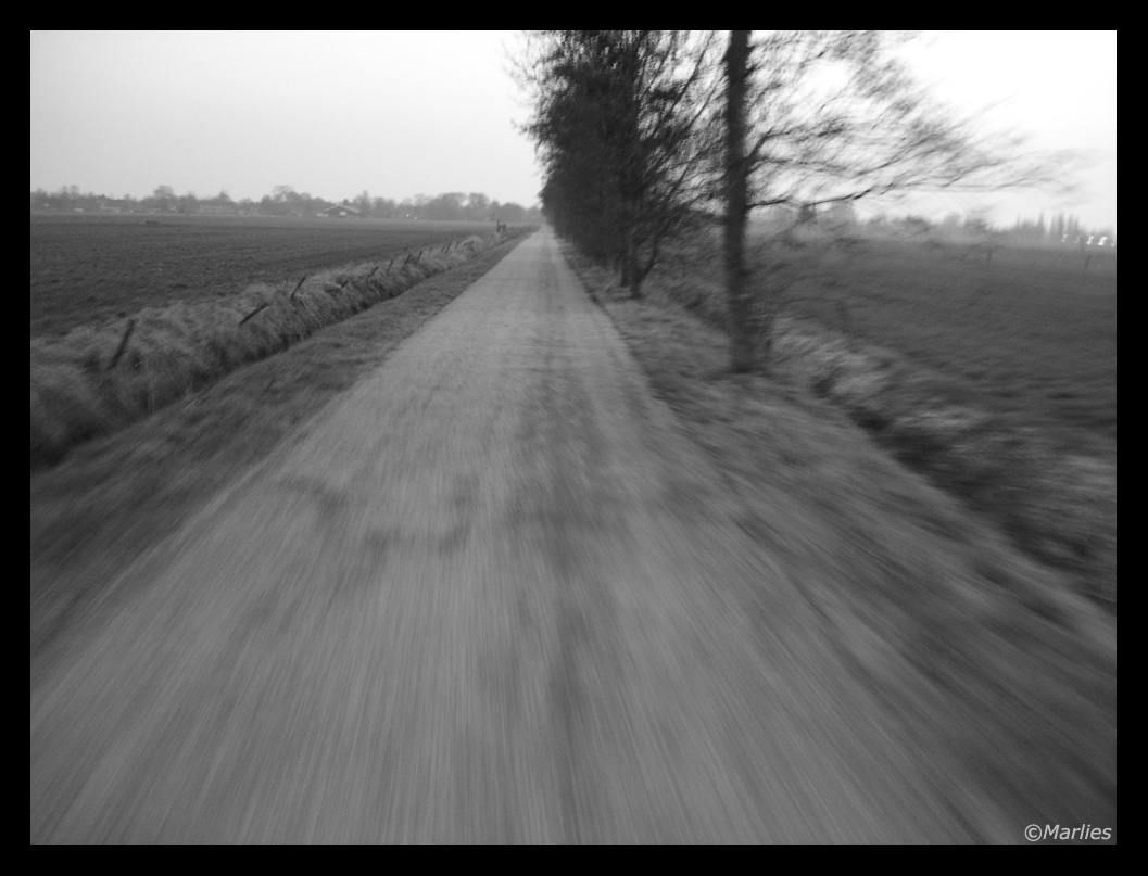 long__empty_road_2_by_singingriver