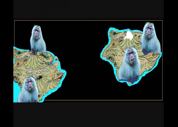 maymun-ada