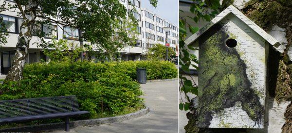 tree-camo-recycle-birdhouse