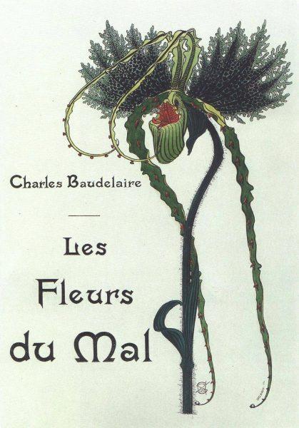 6. elem çiçekleri 1900