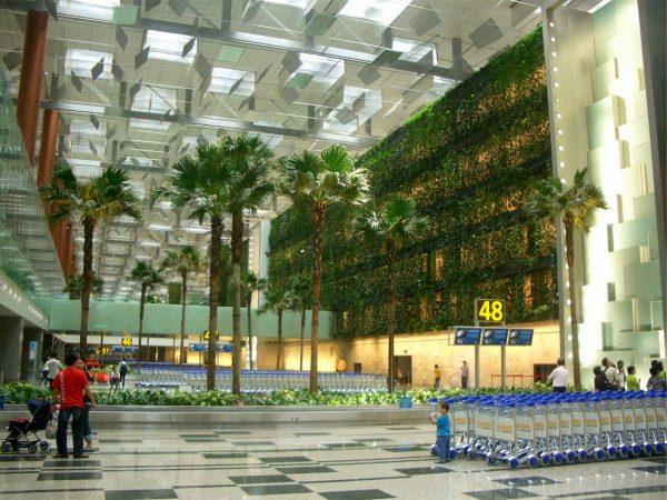 10. Changi Havaalanı