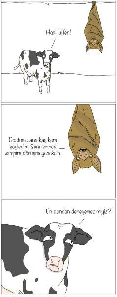 10inek-yarasa