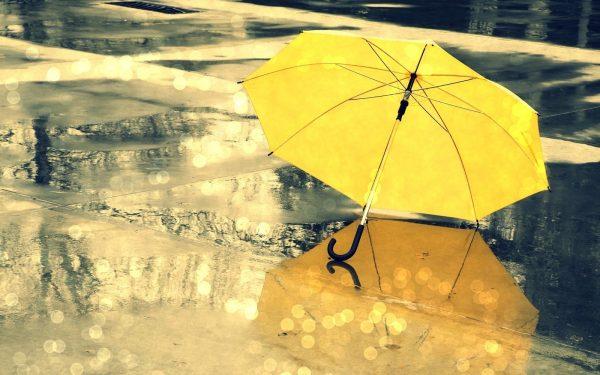 4. Şemsiye
