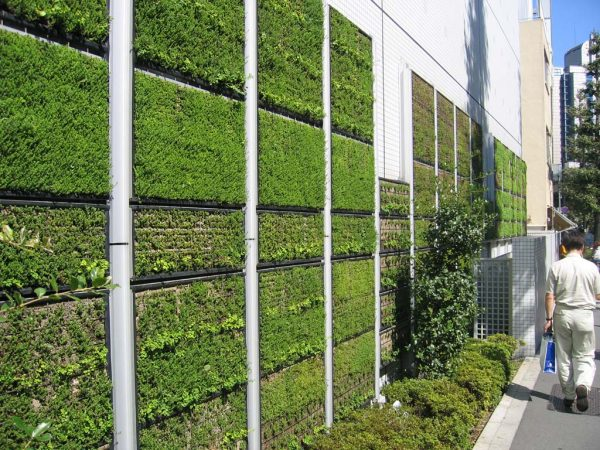 Some green grass tiles?