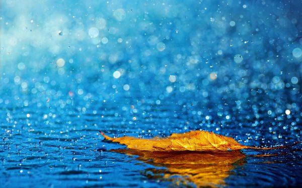 6. Sana Yağmur Diyorum