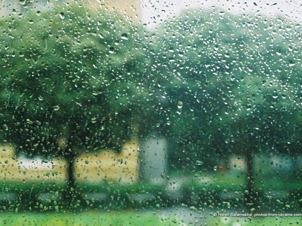 7. Yağmurda