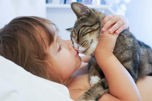 7.kedilerle.ilgili.yanlis.bilinenler.petle