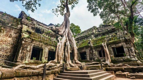 Ta-Prohm-kamboçya