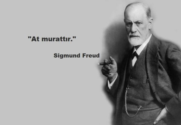 bonus.freud.list