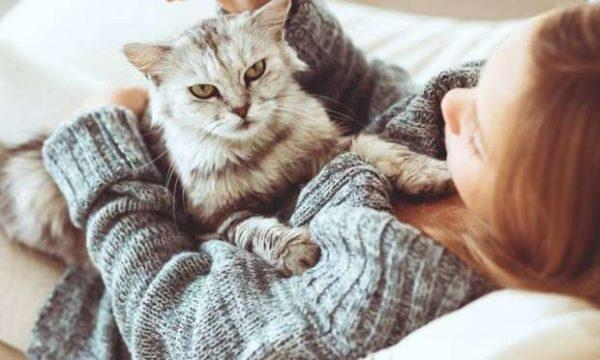 4.asi.kedinizi.minnos