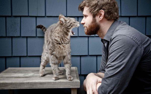 8.asi.kedinizi.minnos