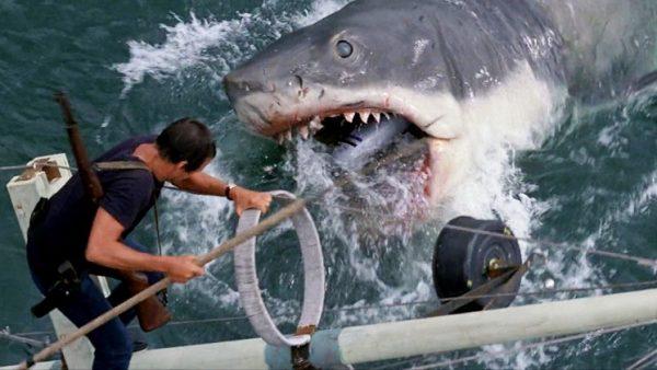 Jaws Denizde Yaşam Mücadelesi FikriSinema