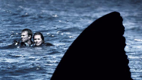 Open Water Denizde Yaşam Mücadelesi FikriSinema