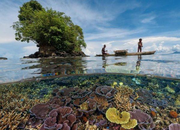 Papua-yeni-gine-rooteto